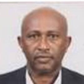 Abebe Ayele Awoke